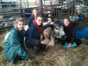 girls with Bertie